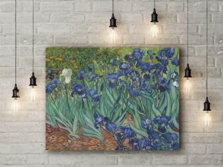 Vincent Van Gogh: Irises. Fine Art Canvas.